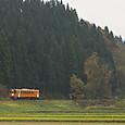 美林の里を行く単行列車