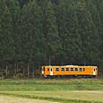 杉の森をかすめるNT8800
