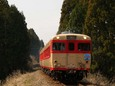 林の中を駆け抜ける急行「能登路」