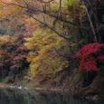 浦山川の風景