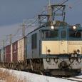 陽光を受けて南下する貨物列車