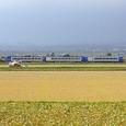 北の穀倉地帯を行く「サロベツ」
