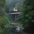 雨霧の渓谷を