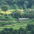 山里を進む単行列車