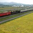 EF81がエスコートするSL回送列車