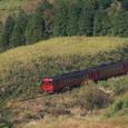 草原を駆け抜ける「九州横断特急」