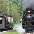 行き交う森林鉄道