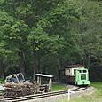 森から出てきた軽便列車