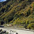 錦秋の高山本線を行く普通列車