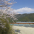 桜見送る阪和色