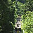 緑の谷を行くキハ38
