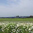 春女苑と「SL銀河ドリーム号」