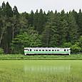 森と水田の間を行く普通列車