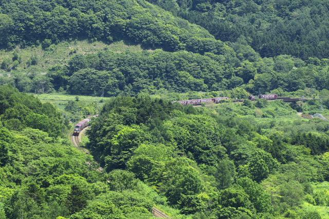 雄大な自然なかを行く貨物列車