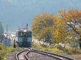 秋色づく東館駅に到着する下り普通列車