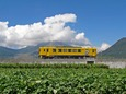 普賢岳を横切る普通列車