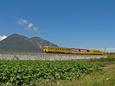 眉山とトロッコ列車