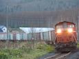 原色DD51が先頭の貨物列車