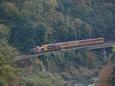 川下りと並走するトロッコ列車