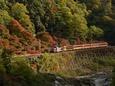 谷間のスポットライトを浴びるトロッコ列車