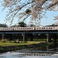 春満ちる乙川を渡るパノラマスーパー