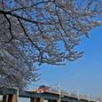 青空に浮かぶ桜とパノラマスーパー