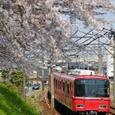 桜と3500系