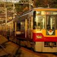 黄色に染まる京阪特急