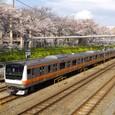 桜の名所を行く快速電車