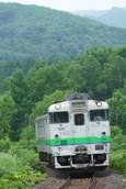 緑溢れる森とキハ40