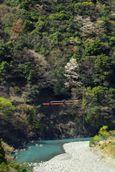 春の奥井川渓谷をゆく